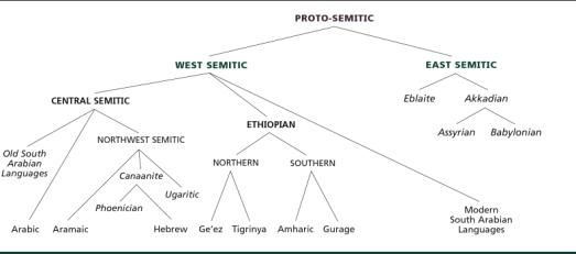 Chart of the Semitic Family Tree